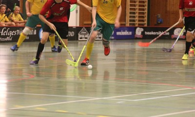 floorball-494818_640