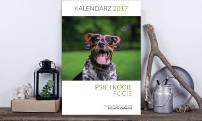 kalendarz-psie-i-kocie-focie-2017-fot-2-1