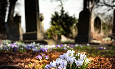 graveyard-1417871_960_720