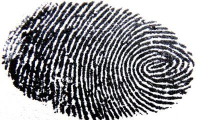 fingerprint-456483_1280