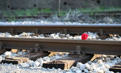 red-rose-on-railway-2780236_1280