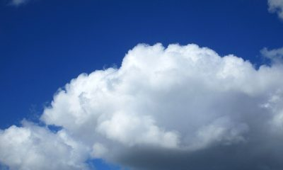 Prognoza pogody dla Torunia na kwiecień wygląda optymistycznie (fot. pixabay)