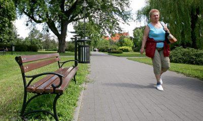 Dodatkowe ławki i kosze na śmieci w Toruniu (fot. torun.pl)