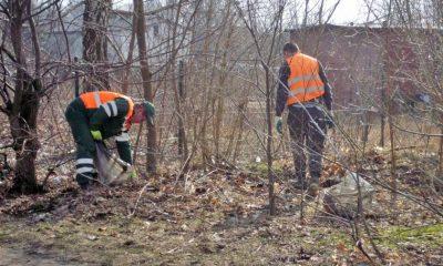 Miasto walczy z nielegalnymi wysypiskami śmieci (fot. torun.pl)