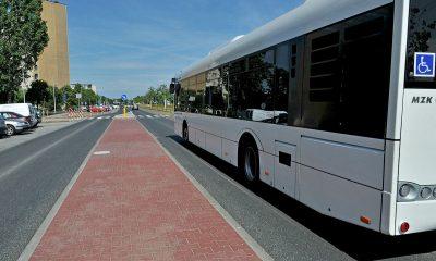 Autobusy do Kamionek będą kursować od 23 czerwca (fot. torun.pl)