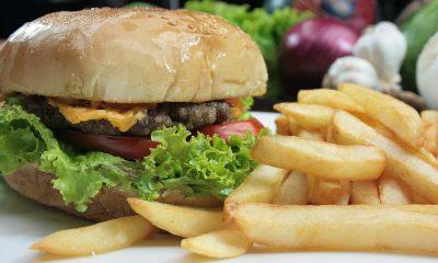burger-1156564_960_720