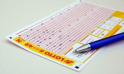 Lotto Bill Gambling Win Lottery Ticket Profit Pay