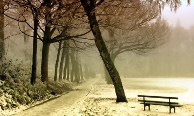 winter-843305_1920